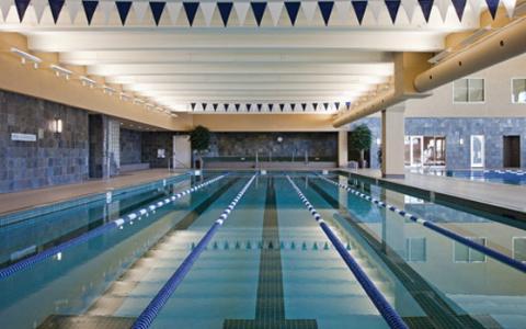 Life time houston swim team for Swimming pool supplies houston