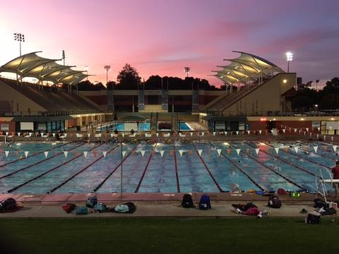 Palo Alto Stanford Aquatics Cardinal Swimming Event
