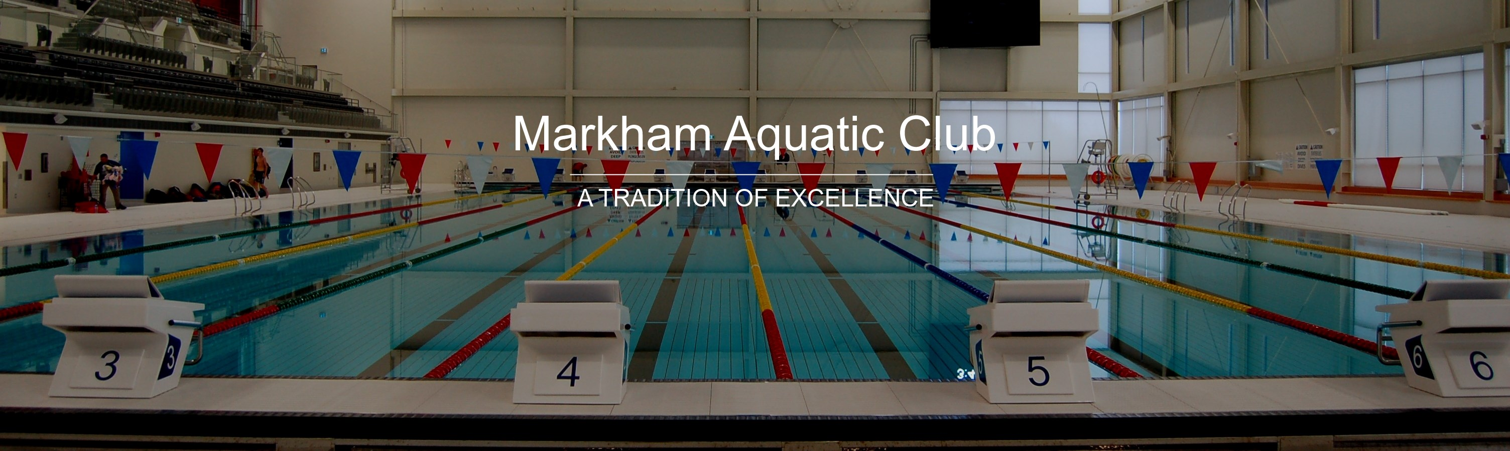 Markham Aquatic Club Home