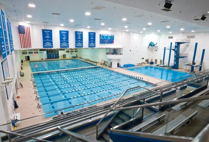 niagara swimming event
