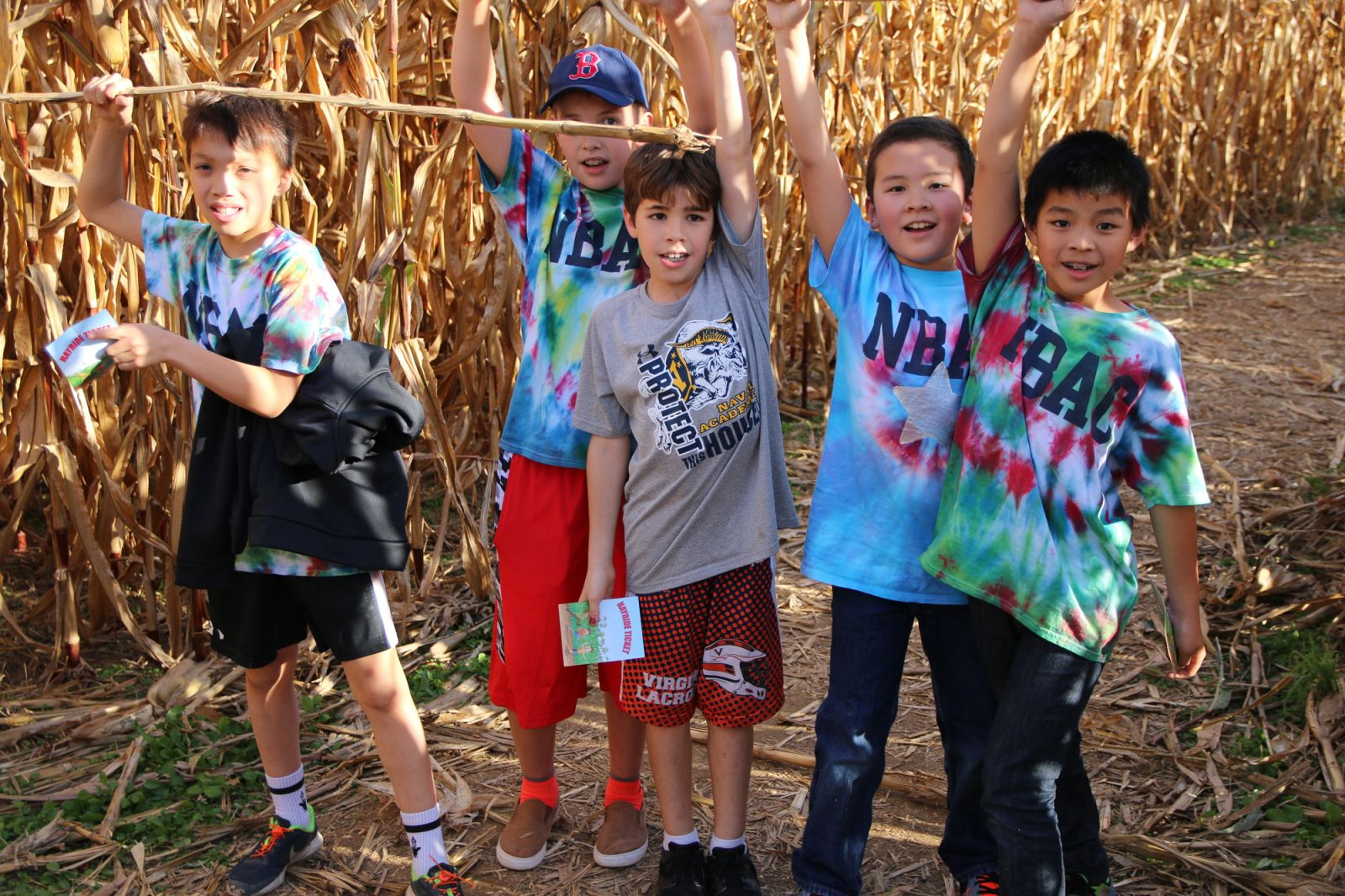 swimmers in the corn maze