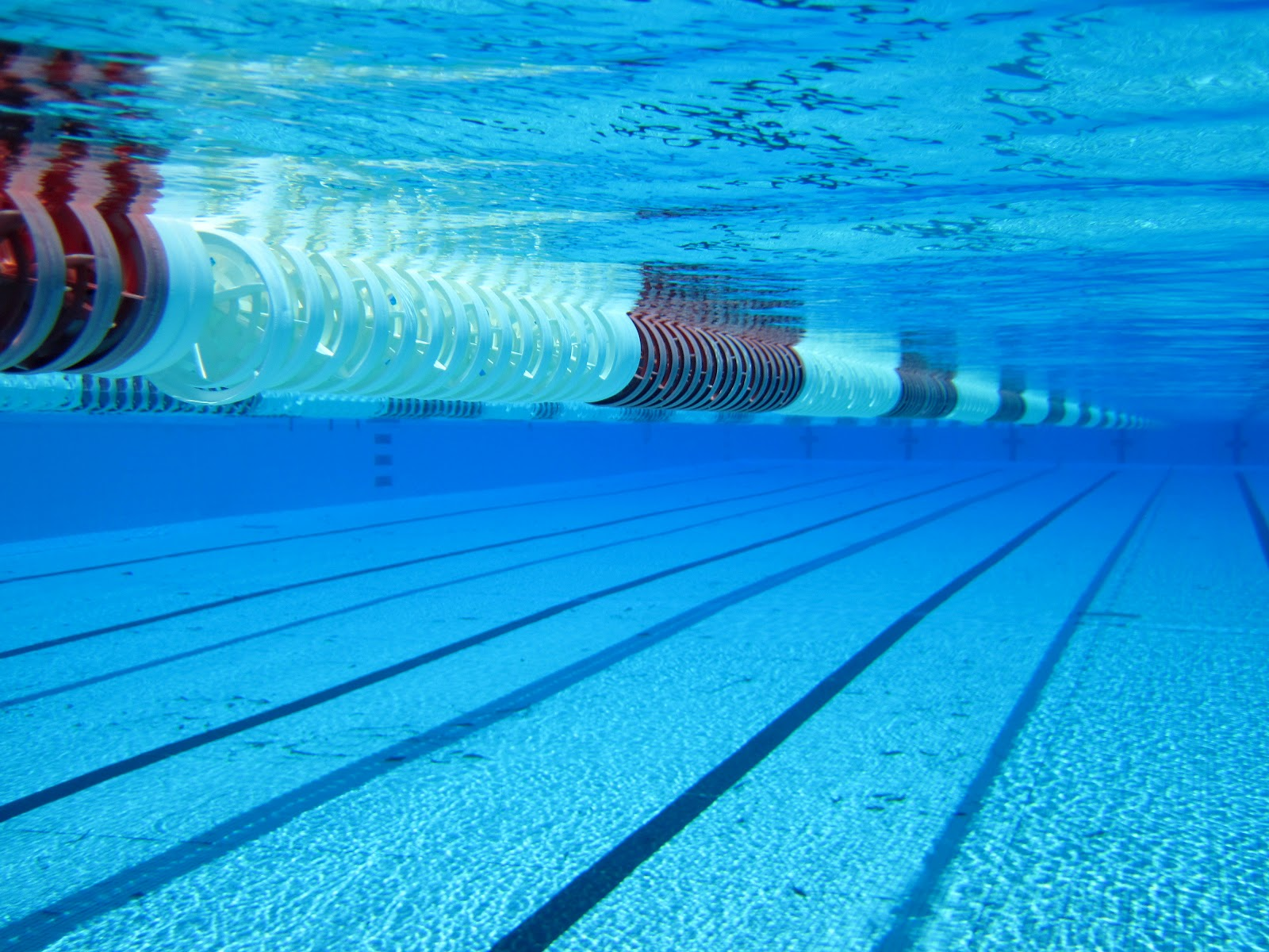 background image - Olympic Swimming Pool Underwater