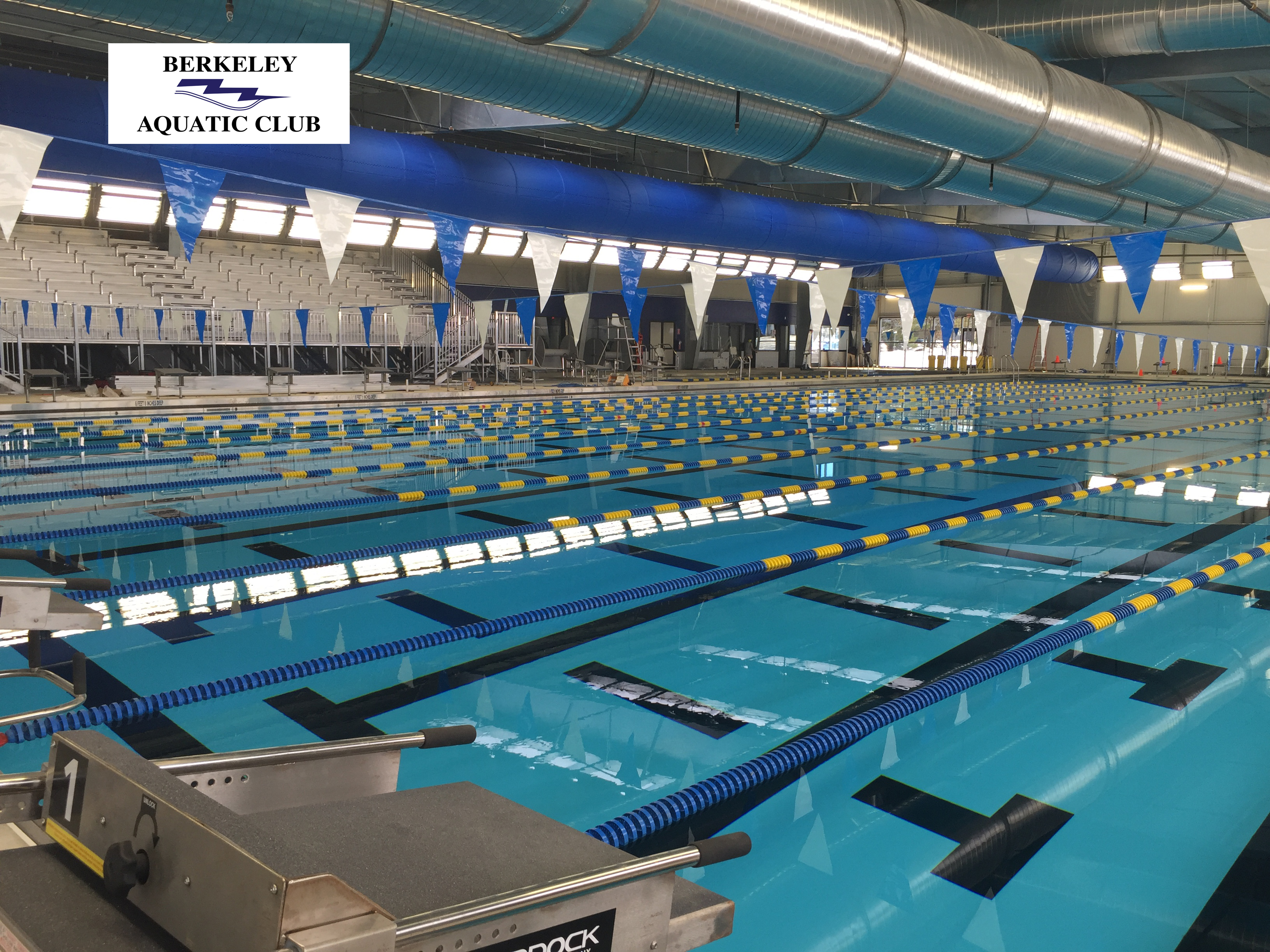 Berkeley aquatic club swim lessons for The heights swimming pool timetable