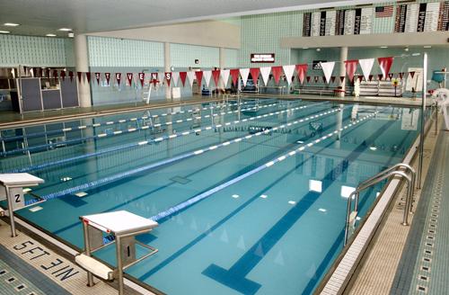 Scarlet Aquatics Bms Division Pool Location