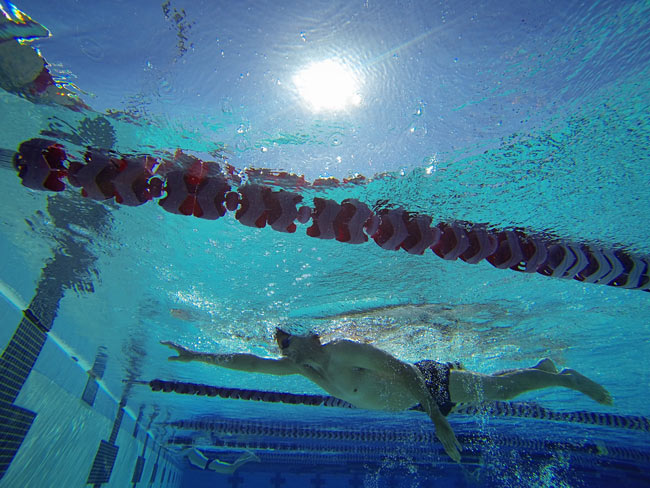 Swimmer doing laps in pool