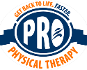 Pro+Physical+Therapy