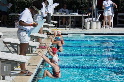 Cayman islands amateur swimming association