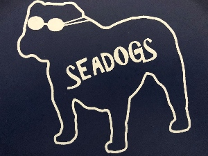 Seadogs Swim Club