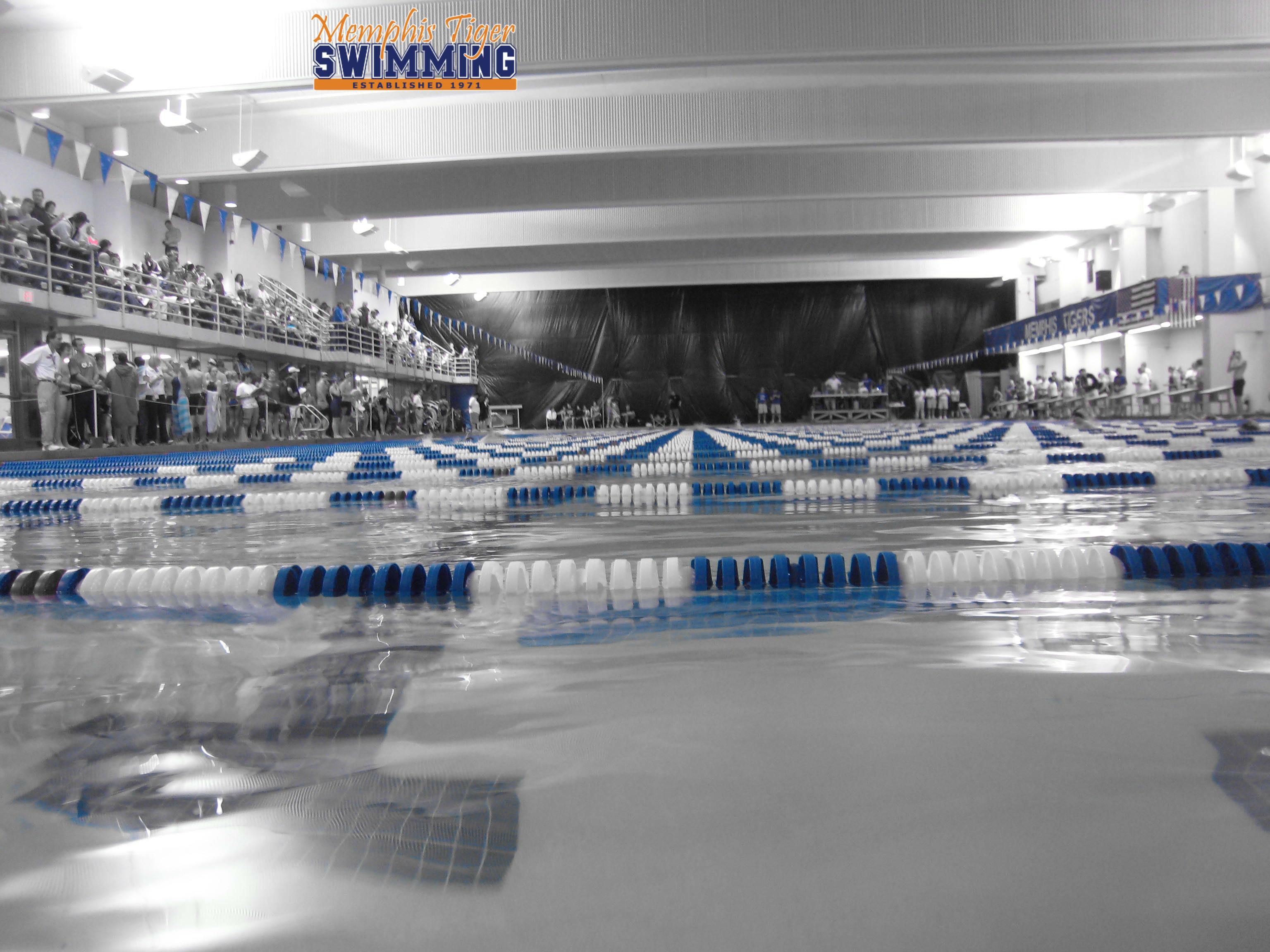 Memphis Tiger YMCA Swimming : Pool Location