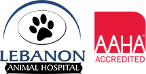 Lebanon+Animal+Hospital