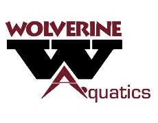 Wolverine Aquatics Club