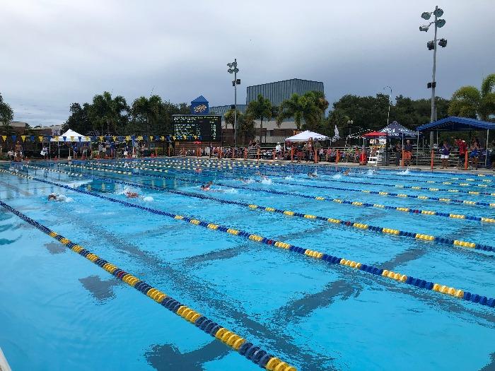 Florida Swimming Home